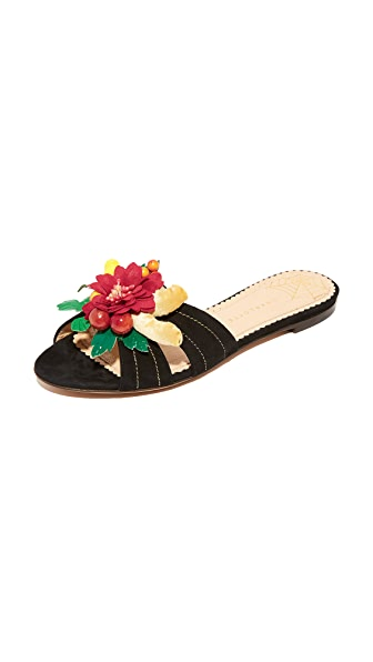 Charlotte Olympia 热带花朵凉拖鞋
