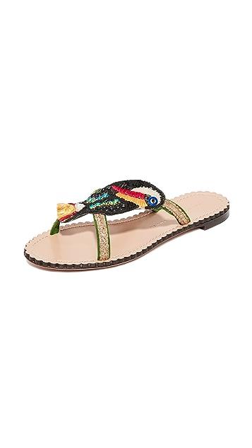Charlotte Olympia Toucano 凉鞋