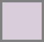 兰花黄昏紫