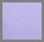 淡彩色紫色
