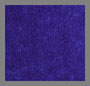 VioletGlass