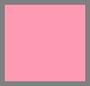 热带植物粉色