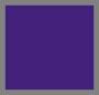 紫色/紫罗兰色