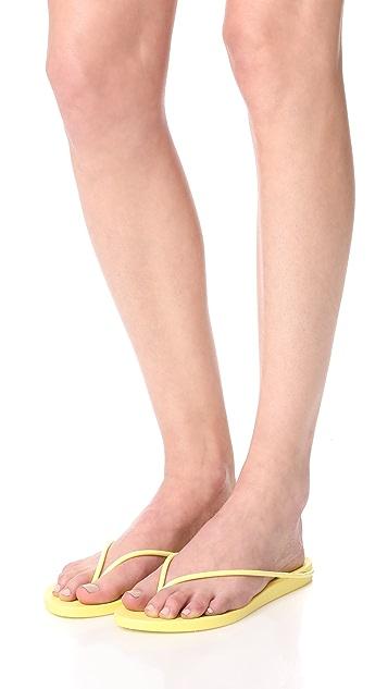 Ipanema Philippe Starck Thing M 夹趾凉鞋