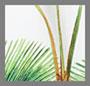 白色棕榈树印花