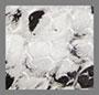 黑色/白色蛇纹