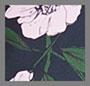 深海蓝花朵
