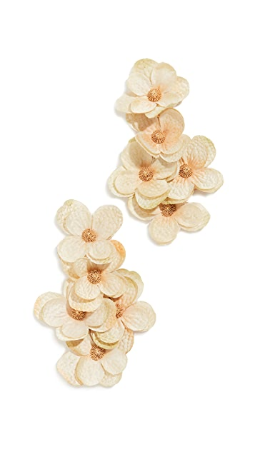 Mallarino Hortensia Golden Galore 耳环
