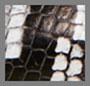 黑色/白色印花蛇纹