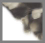 灰色哈瓦那色 / 灰色