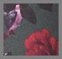 Scarlet Rose 卡其裤