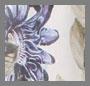 鸢尾花卉印花