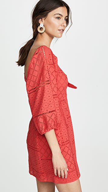 Parker Aruba 连衣裙