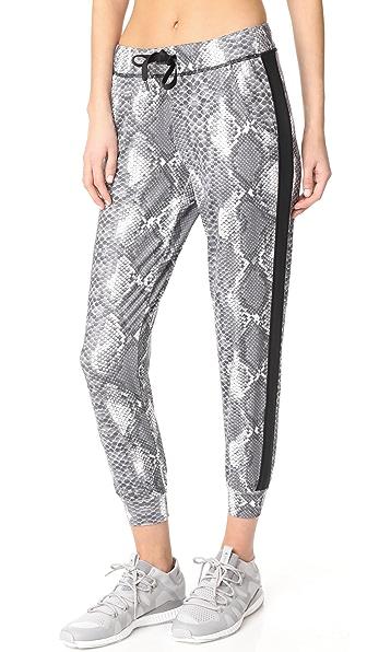 PRISMSPORT Viper 运动裤