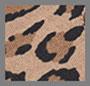 红鱼/豹纹
