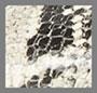 黑色 / 蛇纹印花
