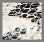 黑色/棕褐色蛇纹印花皮质