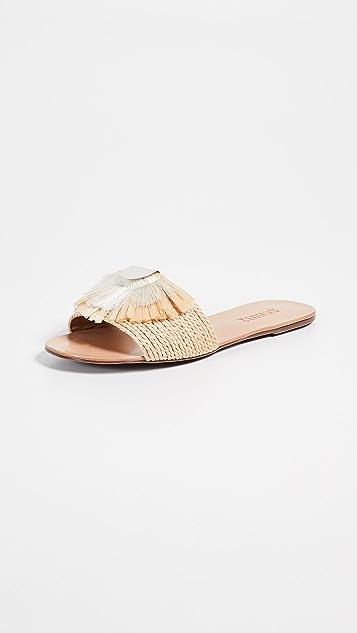 Schutz Argira 凉拖鞋