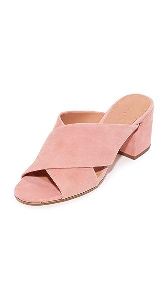 Sigerson Morrison Rhoda 穆勒鞋