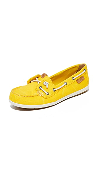 Sperry Coil Ivy 船鞋