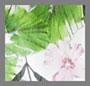 热带风情花朵