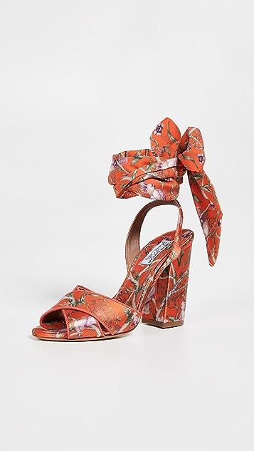 Tabitha Simmons x Johanna Ortiz Connie 环绕式绑带凉鞋