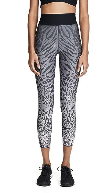 Ultracor Sprinter High Panthera 贴腿裤