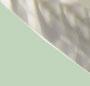 黑玳瑁色 / 长青色