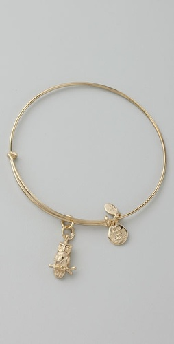 Alex And Ani Owl Expandable Bangle