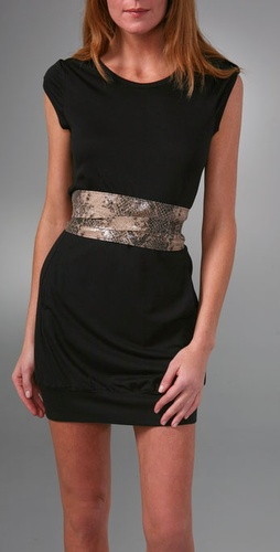 Elegantly Waisted Snake Cummerbund Belt