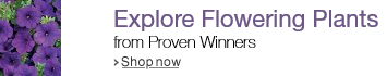 Shop Proven Winners Flowering Plants