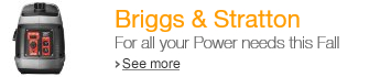 Briggs and Stratton For all your Power needs this Fall
