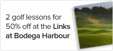 2%20golf%20lessons%20for%2050%25%20off%20at%20The%20Links%20at%20Bodega%20Harbour