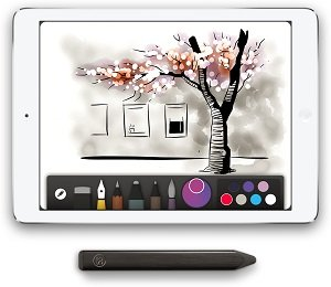 Pencil for the Paper by FiftyThree app