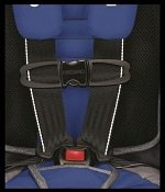 Safety Stripe System