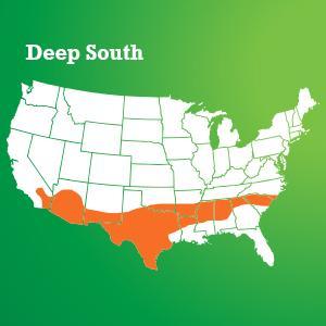 Scotts Turf Builder Grass Seed Deep South