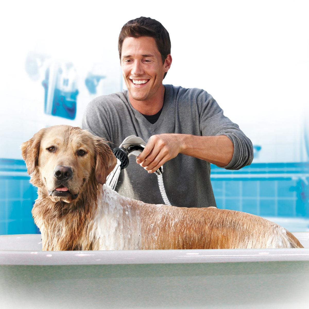 Dog Grooming Supplies Pets At Home