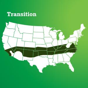 Scotts Turf Builder Grass Seed Transition