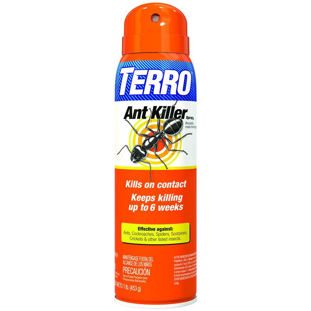 Best outdoor ant spray