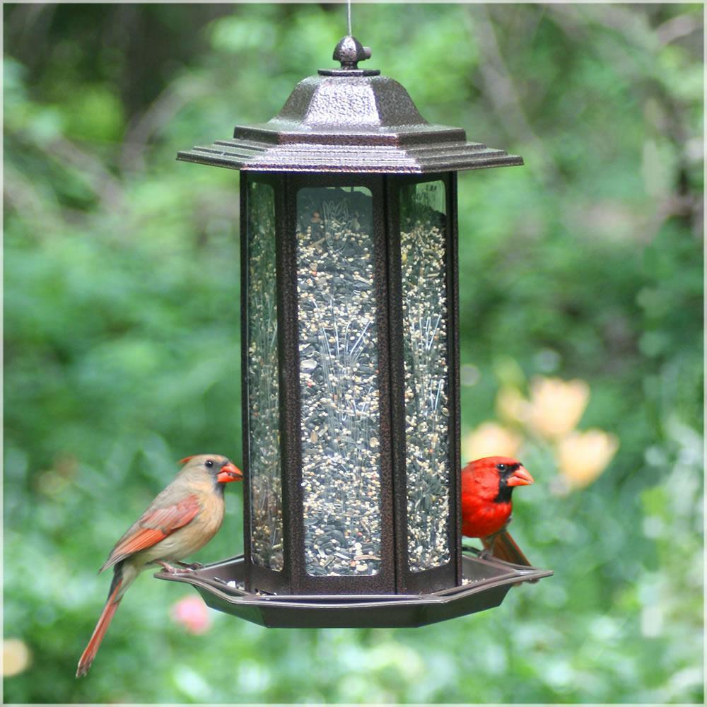 Кормушка для птиц : идеи как сделать своими руками из подручных средств