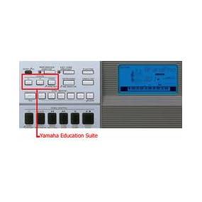 Yamaha ypg 235 76 key portable grand graded action usb for Yamaha ypg 535 88 key portable grand keyboard