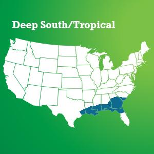 Scotts Turf Builder Grass Seed Deep South/Tropical