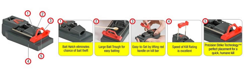 Amazon.com : Victor Quick Kill Mouse Trap (Pack of 12) : Patio ...