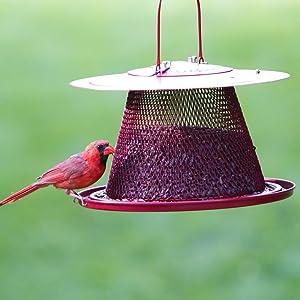No/No Red Cardinal Wild Bird Feeder