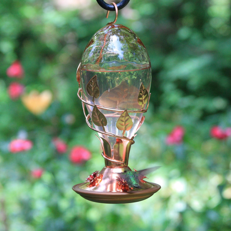 Amazon.com: Avant Garden 8110-3 Looking Glass Hummingbird Feeder