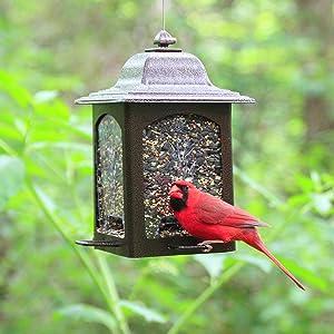 Birdscapes Tulip Garden Lantern Bird Feeder