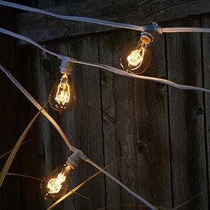 Bulbrite STRING15/E12/BLACK Outdoor Mini String Light, 25-Feet, 15 Light Candelabra Sockets ...