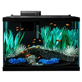 Tetra aquarium kit 20 gallon color fusion for Saltwater fish tank kit