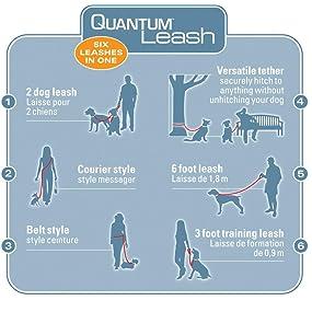 The highly versatile Quantum Leash.