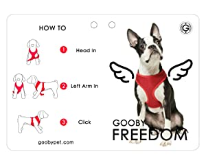 gooby freedom dog harness how to wear